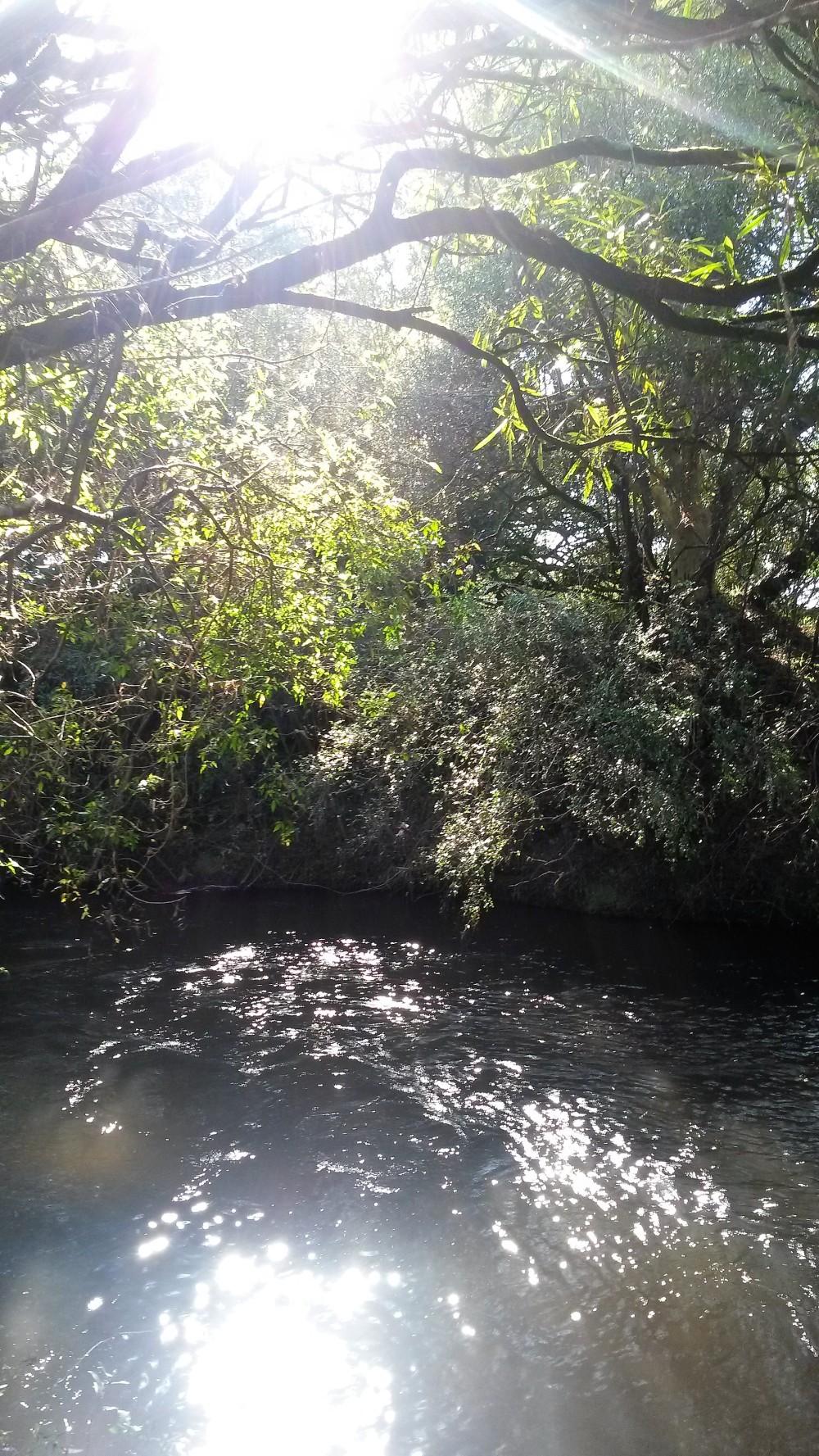 Citas por internet en maçanet de la selva